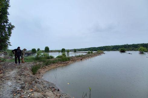 Hutan Mangrove Delta Mahakam di Kaltim Rusak karena Tambak