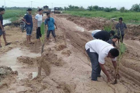 Jalan Rusak Berlumpur Ditanami Pisang dan Sawit, Ini Kata Dinas PU Riau