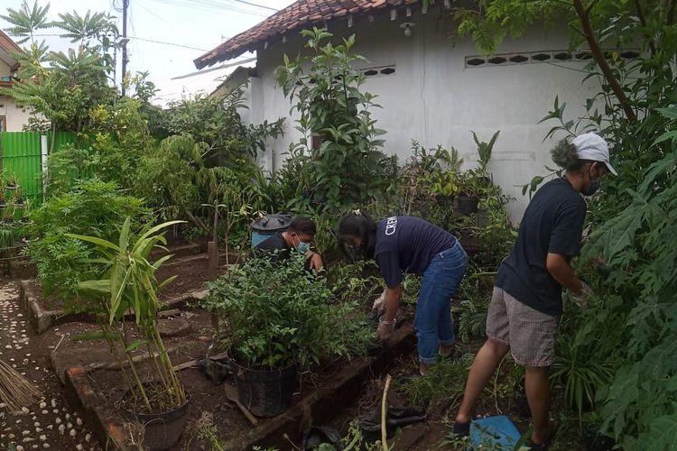 KKN mahasiswa Universitas Kristen Duta Wacana (UKDW) Yogyakarta  melaksanakan program 'Penataan Kebun Tanaman Terintegrasi sebagai Inisiasi Ecowisata'.
