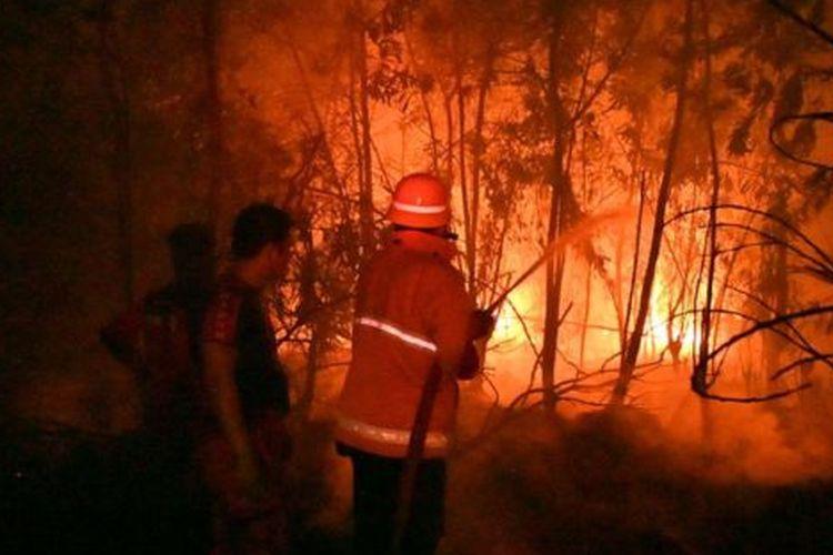 Sejumlah petugas pemadam kebakaran berupaya meredakan api yang melalap kawasan di Pekanbaru, Riau, Jumat (13/9/2019).
