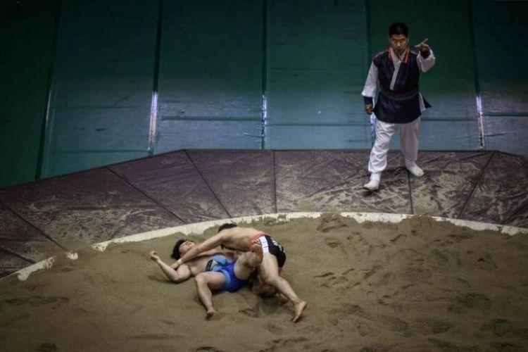 Pegulat ssireum berkompetisi di Korea Open Ssireum Festival di Andong, Korea Selatan, pada19 November 2018. (AFP/Ed Jones)