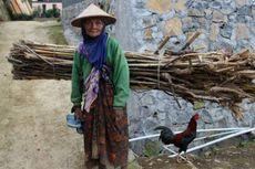 Norwegia Negara Ternyaman untuk Manula, Indonesia Peringkat 71