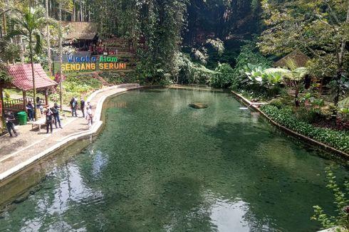Wisata Alam Sendang Seruni di Banyuwangi, Dialiri 7 Sumber Mata Air