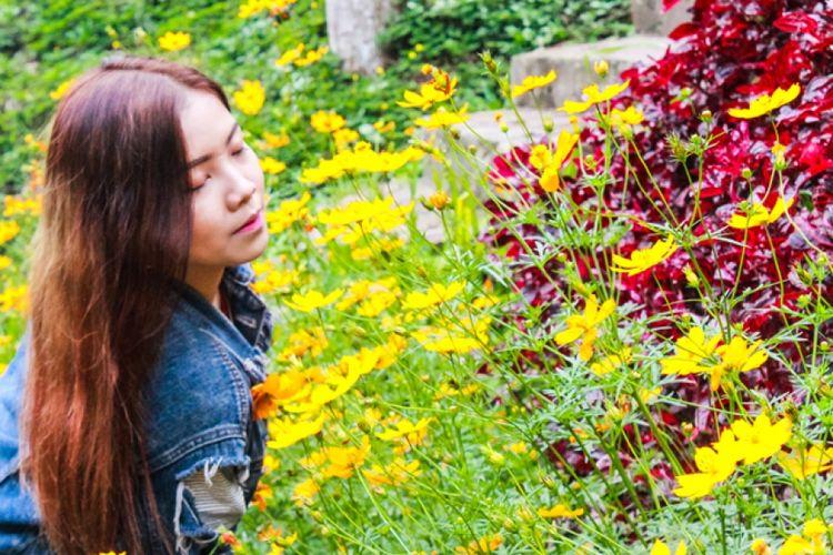 Spot foto di Dago Dreampark yaitu foto bunga.