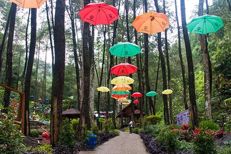 Srambang Park, Ngawi, keindahan taman di tengah hutan, sungai, dan air terjun alam.
