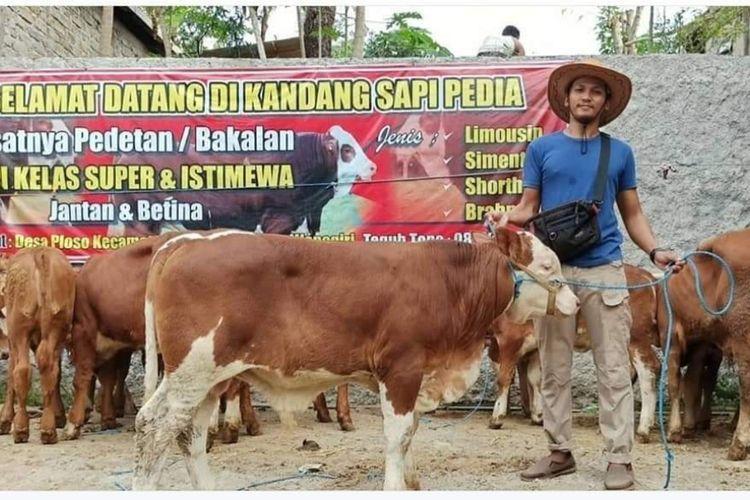 SUKSES—-Teguh Topo (29), warga Dusun Sidowayah, Desa Ploso, Kecamatan Purwantoro, Kabupaten Wonogiri sukses berjualan sapi di masa pandemi. Satu bulan jebolan sarjana komputer UII meraup omzet hingga Rp 60 juta.