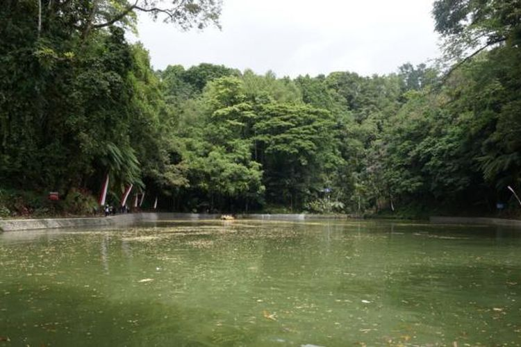 Wana Wisata Rowo Bayu yang ada di Bayu, Kecamatan Songgon, Banyuwangi.
