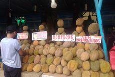 5 Tips Memilih Durian dari Penjual Langsung, Tidak Lagi Galau Pilih Durian Enak