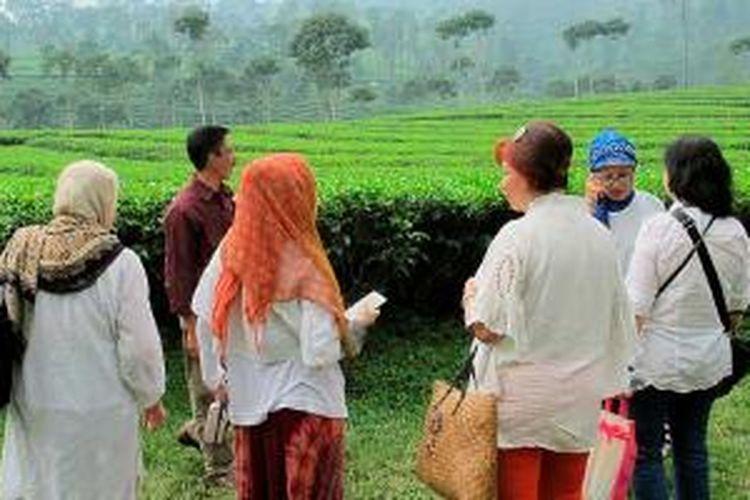 Menikmati Kebun Teh Pagilaran di Batang, Jawa Tengah, awal Desember lalu.