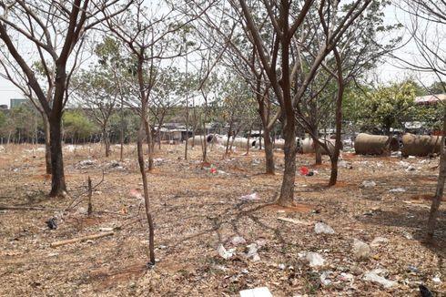 Penampakan Sampah Berserakan di Hutan Kota Danau Cincin