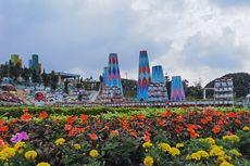 Taman Bunga Celosia Bandungan Tutup Selama Jateng di Rumah Saja