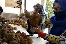 Puluhan Mahasiswa Jual Durian untuk Donasi Bantu Warga Terdampak Corona