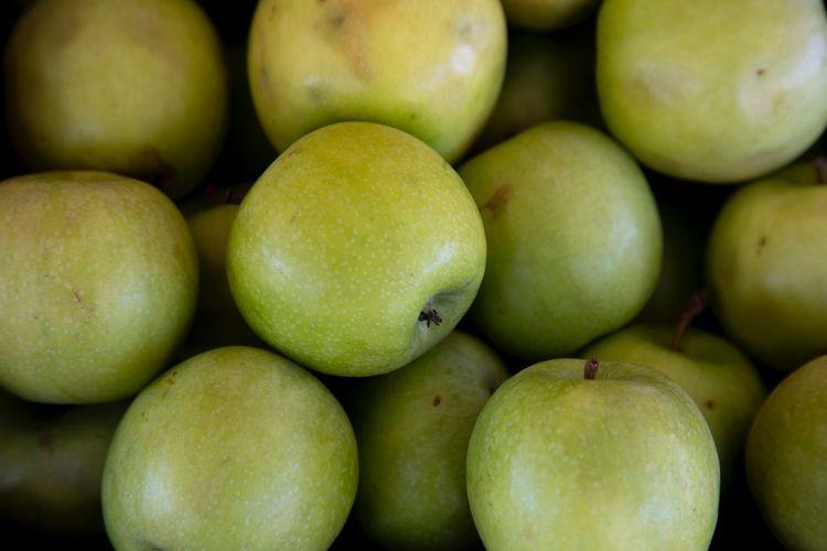 Kandungan nutrisi setiap jenis apel bisa sedikit berbeda, namun mengonsumsinya sehari-hari tetap memungkinkan kita mendapatkan manfaat buah apel.
