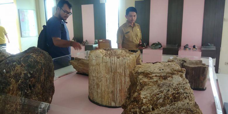 Fosil kayu koleksi Etalase Taman Batu di Mulo, Kecamatan Wonosari, Gunungkidul, DI Yogyakarta, Selasa (13/11/2018).