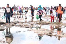 Bau Nyale, Tradisi Memburu Putri Mandalika di Pulau Lombok