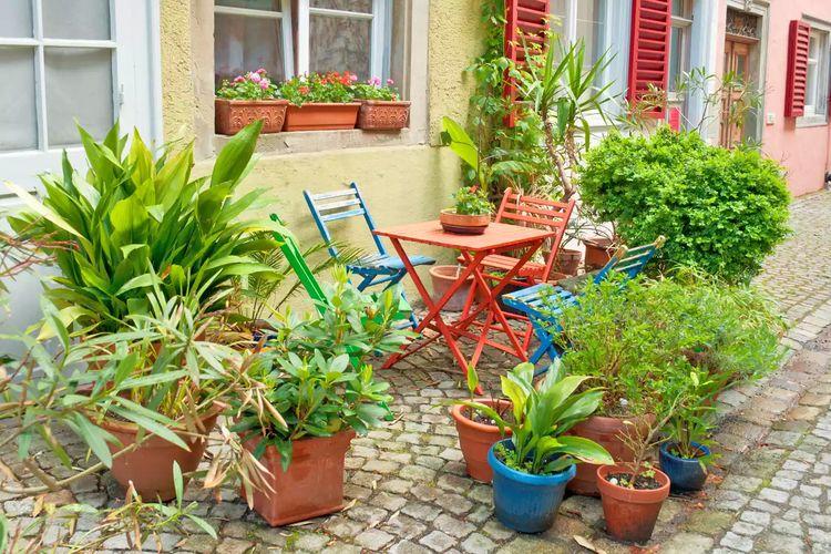 Kursi dan meja di kebun.