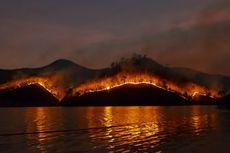 Macam-macam Penyebab Kebakaran Hutan, 90 Persen akibat Ulah Manusia