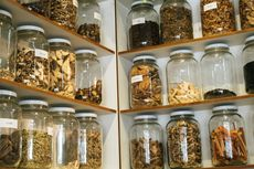 Mengenal Cordyceps Militaris, Obat Herbal LIPI yang Diujikan pada Pasien Covid-19