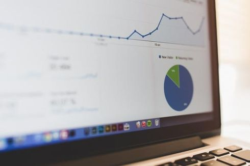 Kekurangan Big Data di Mata BPS