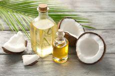 Pakar UGM: Minyak Kelapa Murni Sebagai Terapi Adjuvan Covid-19