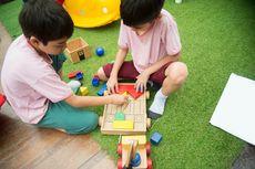 Bagaimana Cara Memilih Mainan Anak Sesuai Usianya?