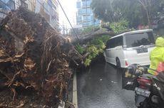 Akibat Pohon Tumbang, Transjakarta Lakukan Pengalihan Rute