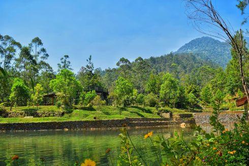 Wisata ke Taman Bougenville Bandung, dari Trekking hingga Menginap