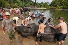 KLHK Dorong Pengembangan Ekowisata Berbasis Masyarakat