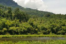 Sejarah di Balik Angkernya Danau Koliheret di Sikka Flores
