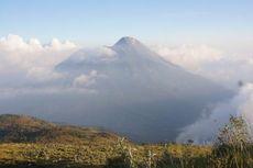 Hutan Gunung Merapi Terbakar Lagi