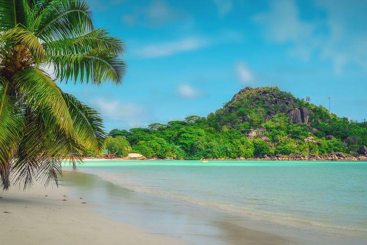 Ilustrasi Seychelles (PIXABAY/Walkerssk).