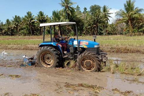 Manfaatkan Alsitan, Mentan Nilai Pertanian di Banyuwangi Mulai Modern