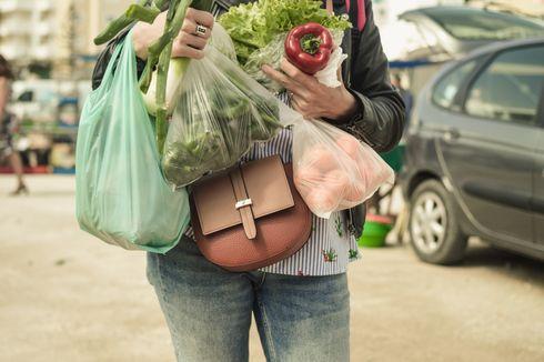 YLKI: Kantong Plastik Berbayar Tak Signifikan Kurangi Penggunaan Plastik