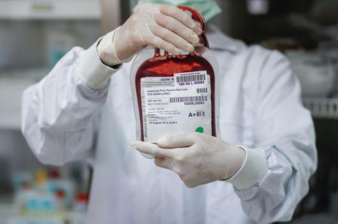 Dulu Bisa 1.000, Sekarang PMI Jakarta Hanya Punya 200 Kantong Darah Sejak Pandemi