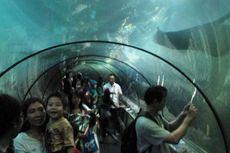 Serba Diskon di Jakarta Tourism Expo