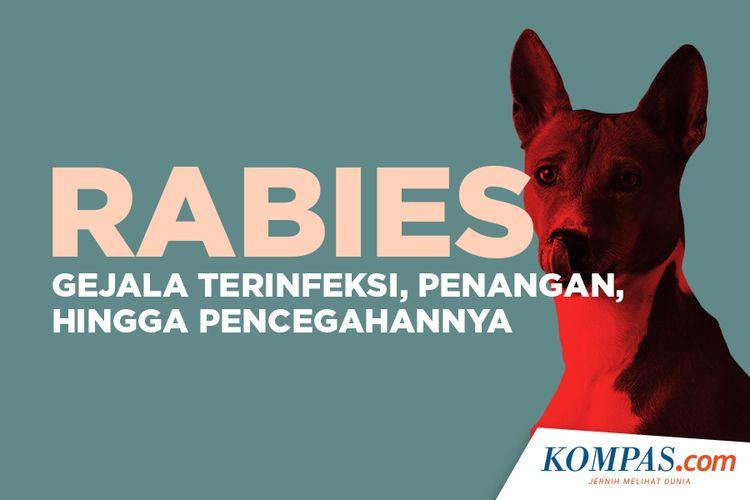 Rabies, Gejala Terinfeksi, Penanganan, hingga Pencegahannya