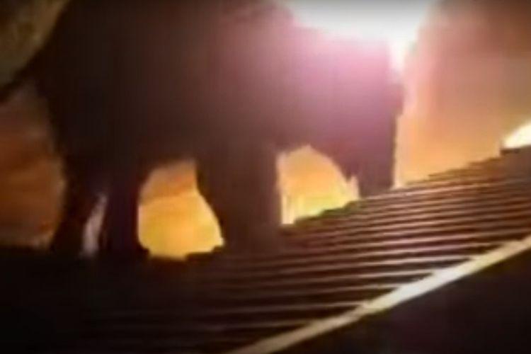 Seekor gajah kesakitan terbakar hidup-hidup setelah pria melempar kain terbakar ke atas kepalanya. [SS/DT Next/Youtube]