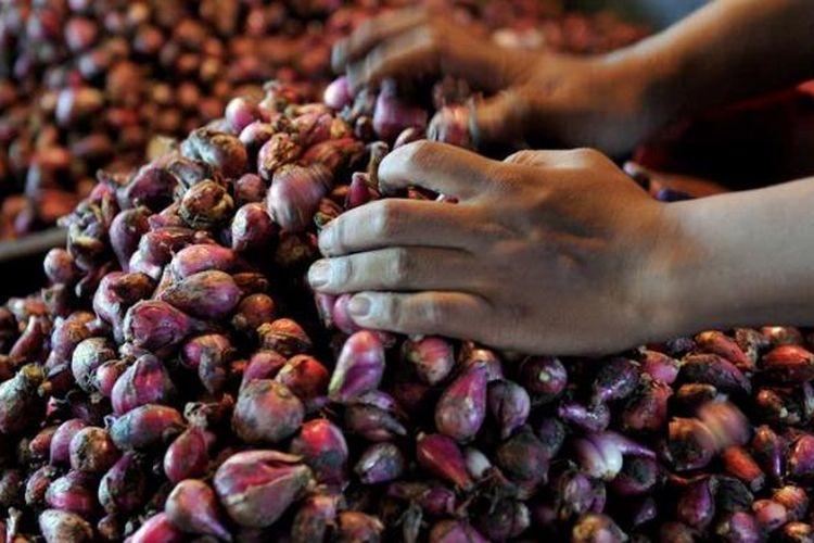 Pedagang bawang merah menata dagangannya di Pasar Senen, Jakarta, Selasa (5/3/2013). Harga produk holtikultura seperti cabai, bawang merah, dan bawang putih tinggi. Bawang merah dijual Rp 26.000 per kilogram sedangkan bawang putih Rp 36.000 per kilogram.