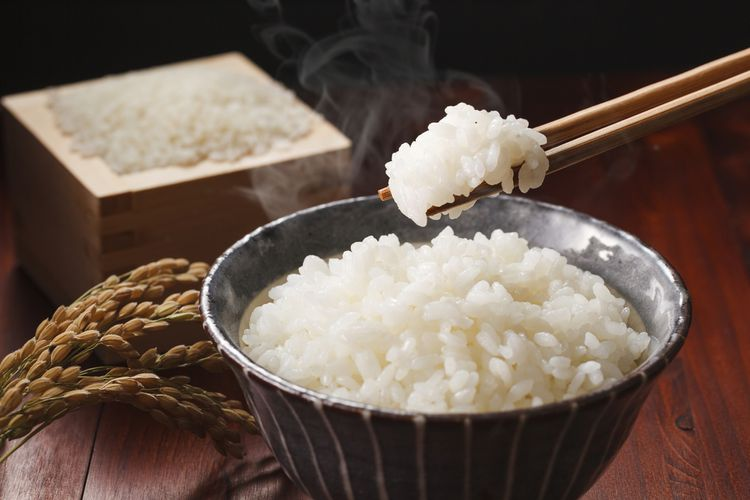 Ilustrasi nasi Jepangs.