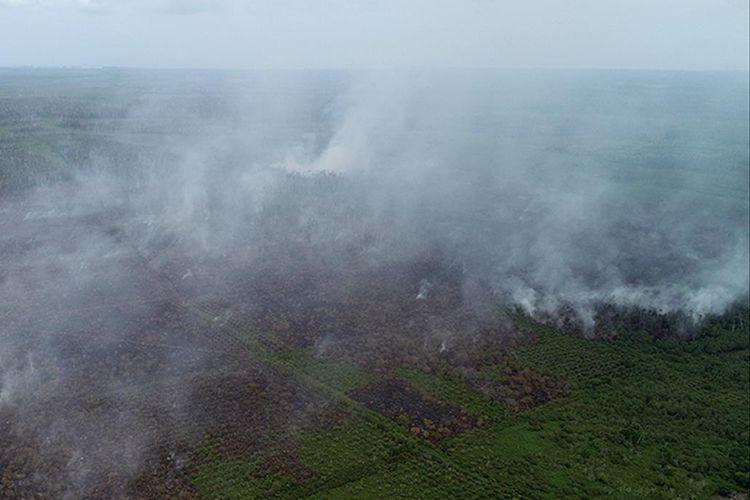 Foto dron dok humas Aceh Barat, Kondisi kebakaran hutan dan lahan gambut yang terjadi di Desa Suak Pangkat, Kecamtan Bubon, Kabupaten Aceh Barat, Senin (05/08/2019).
