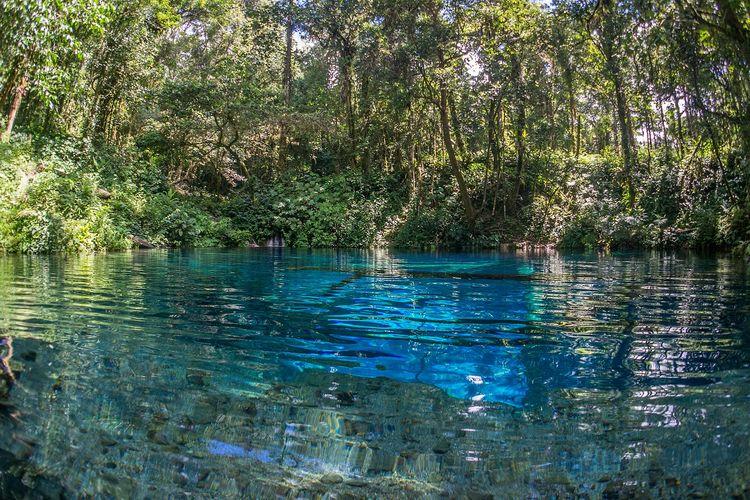 Danau Kaco yang berada di Provinsi Jambi memiliki air yang jernih kebiruan.