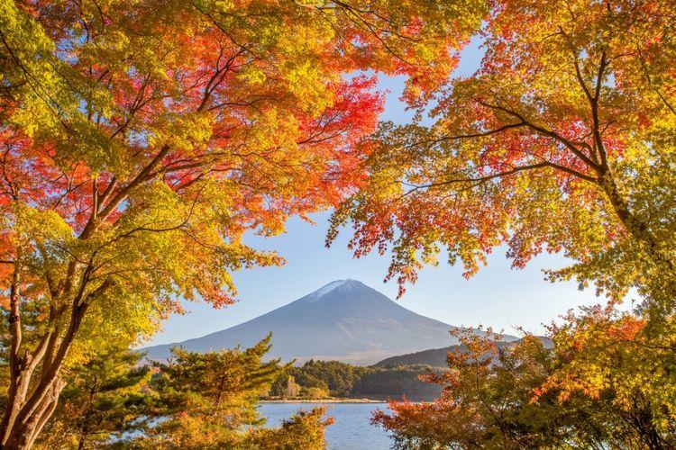ILUSTRASI - Musim gugur di Jepang