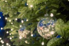 Cara Menjaga Pohon Natal Tetap Segar