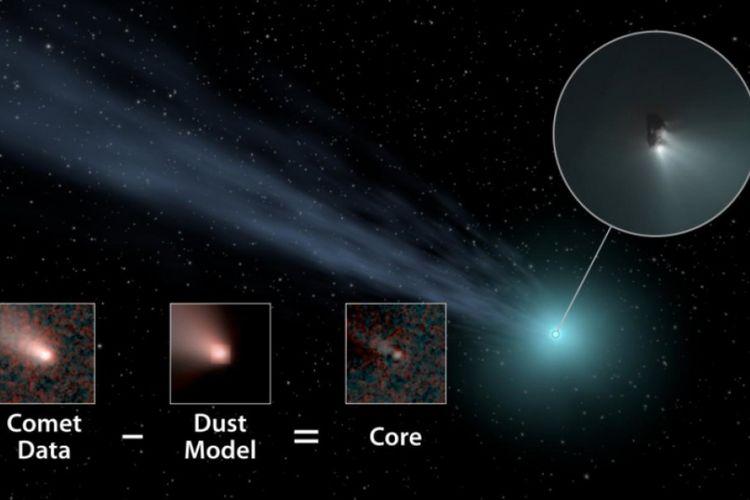 Ilustrasi ini menunjukkan bagaimana WISE mengungkap ukuran asli dari komet-komet ini.
