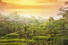 Indonesa Dipilih jadi Negara Paling Santai di Dunia
