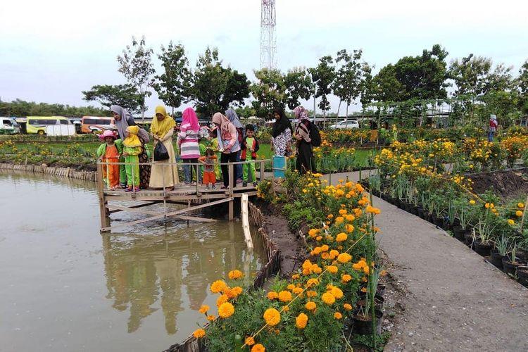 Desa Wisata di Kabupaten Lamongan - Wisata Besur Agro Edukasi, Desa Besur, Kecamatan Sekaran, Kabupaten Lamongan.