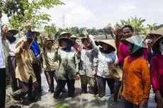 Jokowi Bantah Lakukan Kampanye di Ponorogo dan Pacitan