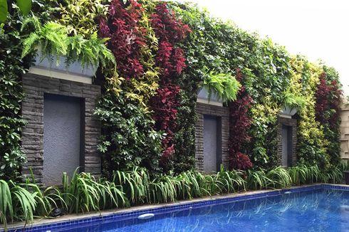 10 Contoh Taman Vertikal Bikin Rumah Lebih Segar