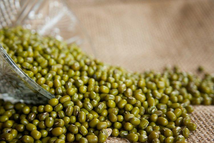 Ilustrasi kacang hijau.