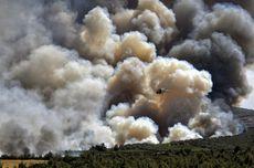 Kebakaran 2 Hutan Besar di Yunani, Suhu Capai 45 Derajat Celsius
